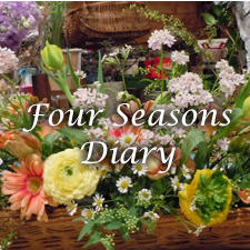 Four Seasons Diary